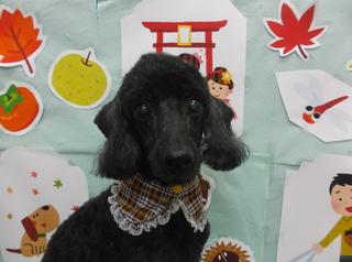 18.11.11瓜田 みのる.JPG