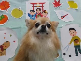 18.11.27杉田 ココ.JPG