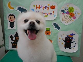 19.10.13畠山 リク.JPG