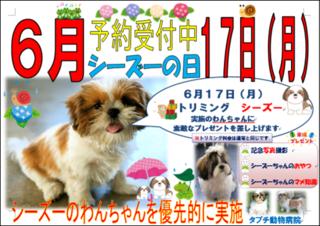 シーズーの日3ポスター画像.png