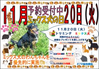 ミックス犬の日2ポスター画像.png